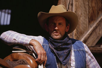 5 TV Westerns lasted 7 + years. 2 obvious ones are Gunsmoke & Bonanza. What's other 3?