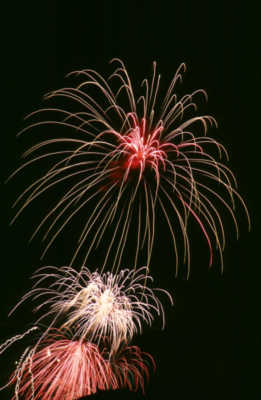 The popularity of these Fireworks has decreased by 40% over the past 10 years. What are they?