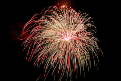Bottle Rockets are the most popular selling Fireworks. What came in 2nd on the list?