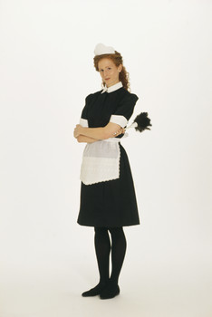 The greatest TV maid of all time was, Alice from the Brady Bunch. Who was #2?